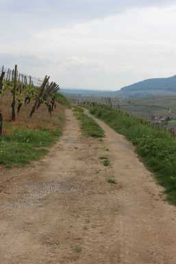 Dichterweg (Soultzmatt)