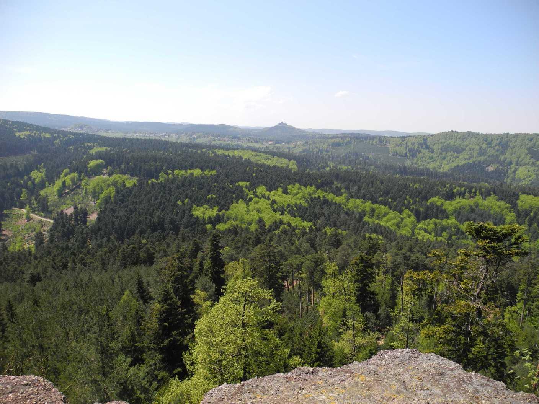 Belle vue Ochsenstein