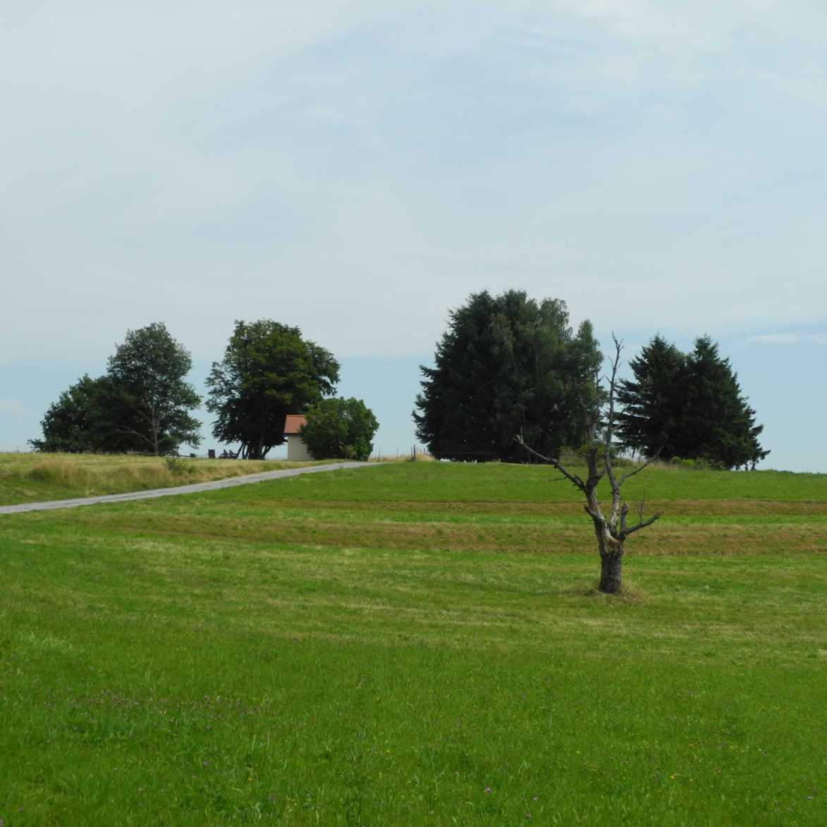 Wie diese kleine Kapelle in der Landschaft ist auch Masevaux noch ein weißer Fleck auf der Landkarte. Ob sich das jemals ändert?