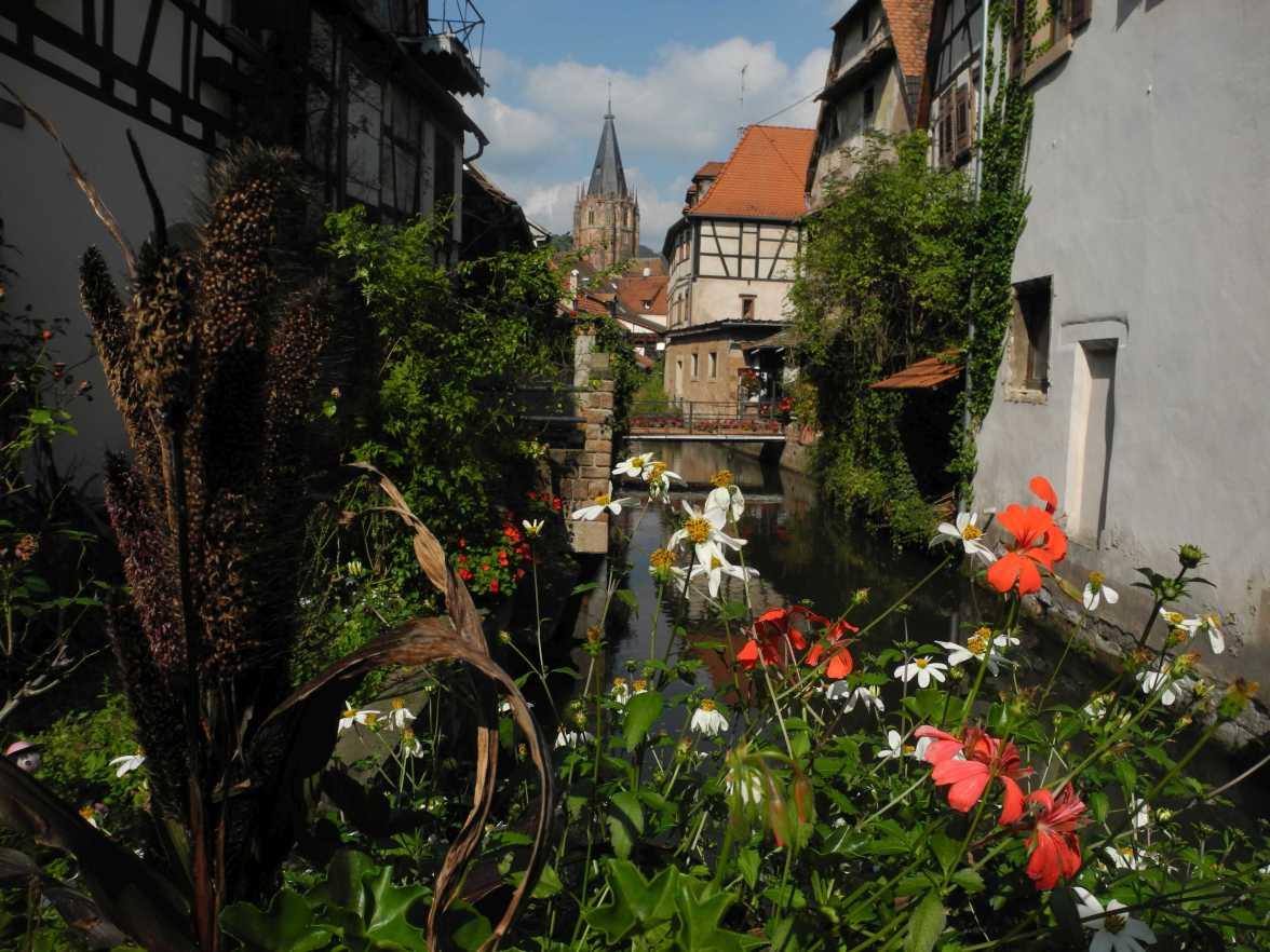 Danke für die Blumen, aber es wäre nicht nötig gewesen. Le Schlupf ist das - ja das - Fotomotiv im an Motiven nicht armen Wissembourg. Click, Click, dieses Motiv hält ewig.