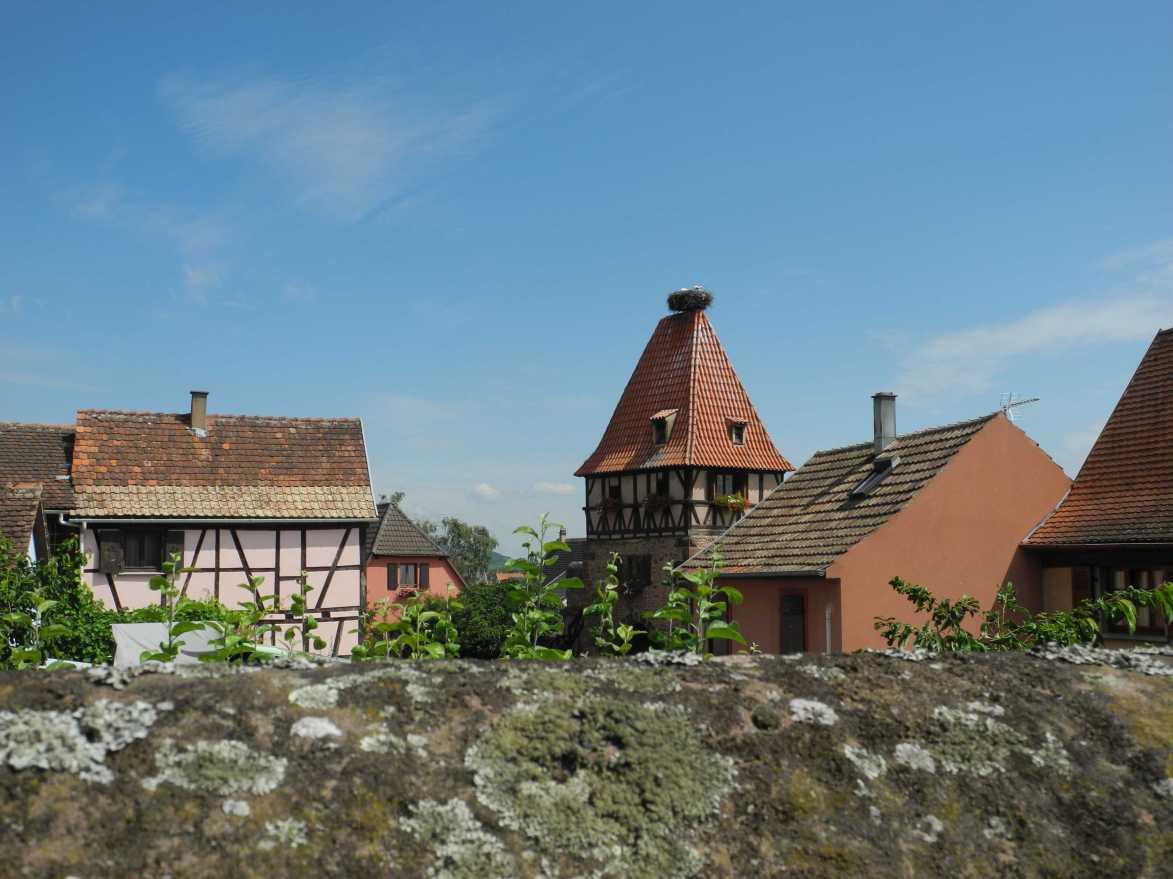 Wie im Bilderbuch ... Châtenois im Elsass an einem strahlenden Sonntag im Juni